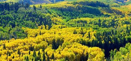 cenário alpino do colorado durante a temporada de folhagem foto
