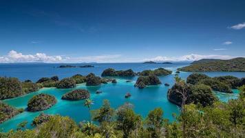 ilha de calcário na lagoa, raja ampat, indonésia 01 foto