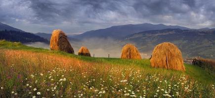 agricultura alpina de subsistência foto