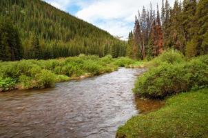 riacho dez milhas ao norte foto
