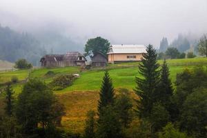 linda casa de madeira em uma colina verde