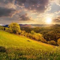 cerca no prado na encosta da montanha ao pôr do sol