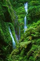 cachoeira madakaripura, java oriental, indonésia foto