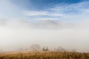 nuvens dramáticas com montanha e árvore foto