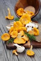 cogumelos em uma mesa de madeira foto