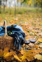 cesta com cobertor, vinho e taças foto