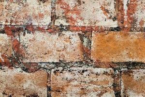 textura da parede de tijolos foto
