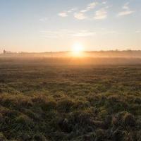 lindo prado enevoado na geada da manhã foto
