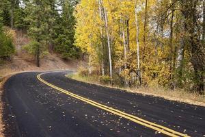 estrada secundária no outono.