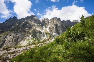 montanhas no verão foto