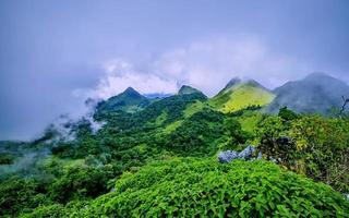 montanha com névoa
