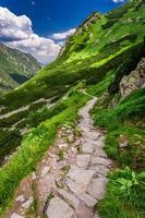 trilha nas montanhas liderando o pico em dia ensolarado