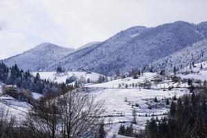 paisagem de inverno em uma vila romena - magura