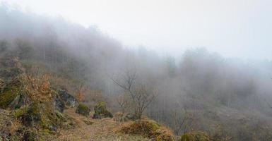 nevoeiro na montanha