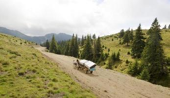 carroça a cavalo nas montanhas