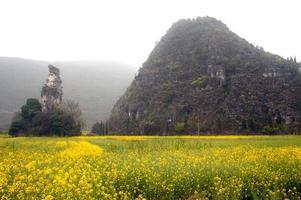 montanhas e paisagens de pastagem.