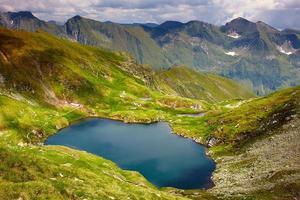 lago capra na romênia