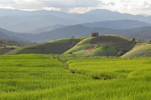 terraços de arroz e montanhas foto