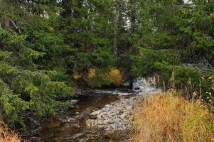 riacho de montanhas subpolares foto