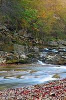 rio da montanha no outono
