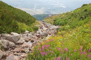 tatras altos - olhe do lago de montanha skalnate pleso