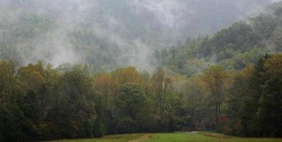 névoa da manhã