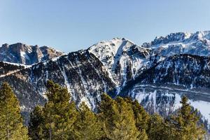 panorama das dolomitas com picos nevados e coníferas
