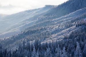 paisagem cênica de inverno nas montanhas dos Cárpatos foto
