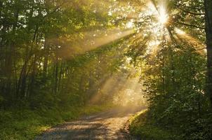 raios de sol cobrem uma pequena estrada na montanha nas primeiras horas da manhã.