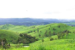 campo nas montanhas azuis foto