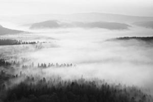 bela montanha dentro de inversão. picos de colinas aumentaram de nevoeiro foto