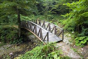 Ponte de madeira foto