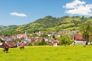 Town Schwyz