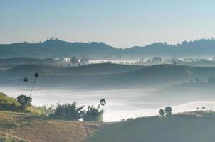 nevoeiro matinal na montanha