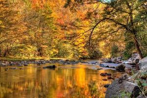 outono nas montanhas esfumaçadas