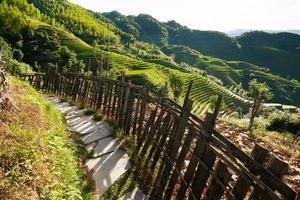 montanhas chinesas e caminho de pedra foto