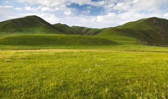montanha de savana verde em tibe