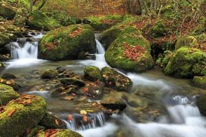 rio da montanha no final do outono