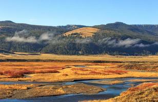 Parque Nacional de Yellowstone Mountain Valley. foto