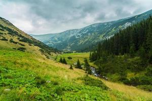 cenário pastoral nos Alpes