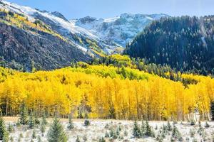 outono no colorado foto