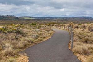 caminho sinuoso entre a vegetação costeira na grande estrada do oceano, au foto