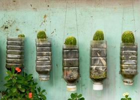 paredes de plantas foto