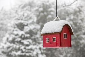 casinha de passarinho com neve no inverno foto