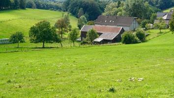 casas antigas em um grande prado foto