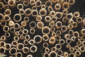 círculos de bambu