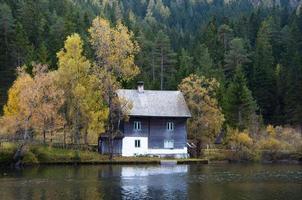 casa solitária na floresta foto