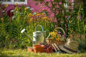 jardinagem foto