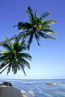 filipinas, província de surigao del norte, ilha de siargao, barcos locais.