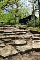 cabana histórica na floresta